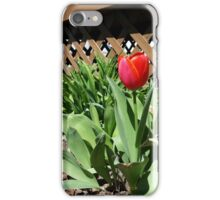 Blooming by the Lattice iPhone Case/Skin