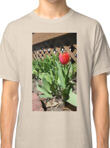 Blooming by the Lattice Classic T-Shirt