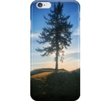 Chambers Bay Golf Course Tree at Sunset iPhone Case/Skin