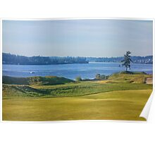 Chambers Bay Tree on the Puget Sound  Poster