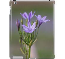 Ithuriel's Spear iPad Case/Skin