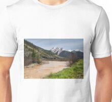 Red Mountain and Red Mountain Creek Unisex T-Shirt