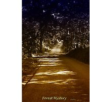 Forest Mystery Photographic Print