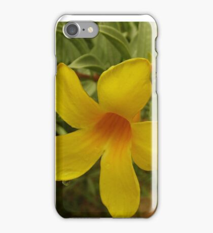 Morning flower dew drops iPhone Case/Skin