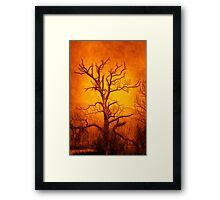 Tree of Enlightenment Framed Print