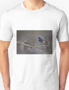 Black Redstart (Phoenicurus ochruros) perched on a branch Unisex T-Shirt