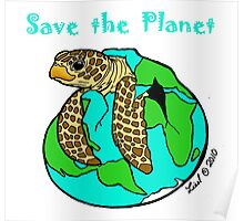 Turtle Earth Poster