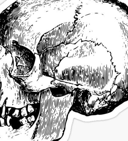 Skull 1 Sticker