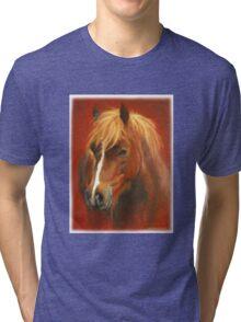 Mr Brooks (welsh pony) Tri-blend T-Shirt