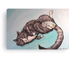 Teddy the Cat Canvas Print