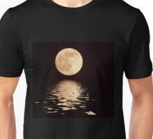 Perigee Moon With Flood Filter Unisex T-Shirt