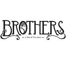 Brothers - a Tale of Two Sons Photographic Print
