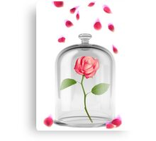 Rose in glass jar Canvas Print