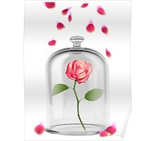 Rose in glass jar Poster