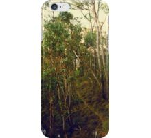 Lonely Forest Path iPhone Case/Skin