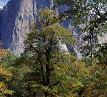 El Capitan with fall color Sticker