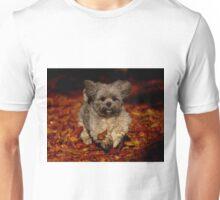 Playful Shih Tzu Unisex T-Shirt