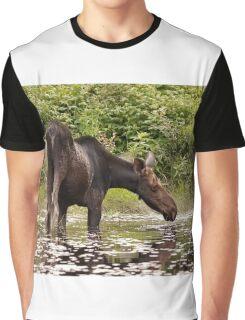 Moose in pond - Algonquin Park Graphic T-Shirt