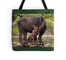 My dinner with a moose - Algonquin Park Tote Bag