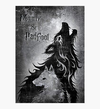 Moony & Padfoot Photographic Print
