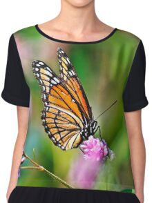 Colorful Viceroy Butterfly Chiffon Top