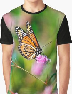 Colorful Viceroy Butterfly Graphic T-Shirt