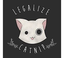 Legalize Catnip Photographic Print