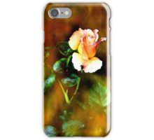 Memory of romance iPhone Case/Skin