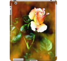 Memory of romance iPad Case/Skin