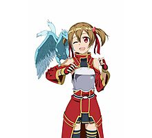 Silica How To Train Your Dragon Photographic Print
