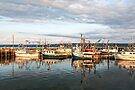 Digby Harbour by PhotosByHealy