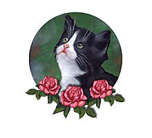 Cat with Pink Roses: Oil Pastel Art, Kitten Photographic Print