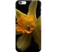 The first daffodil of spring iPhone Case/Skin