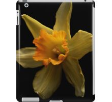 The first daffodil of spring iPad Case/Skin