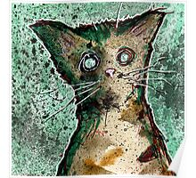 Turtle the turtleshell zombie kitten Poster