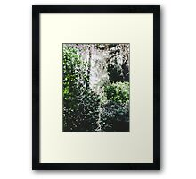 Nature 3 Framed Print