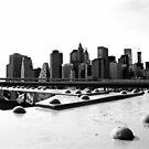 Manhattan from Brooklyn Bridge by Jean-Luc Rollier