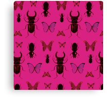 Pink bugs Canvas Print