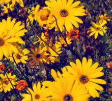 Yellow flower patch Sticker