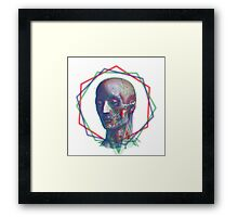 Anatomy RGB Framed Print