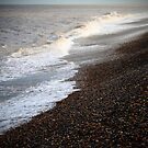Pebble Shore by Dale Rockell