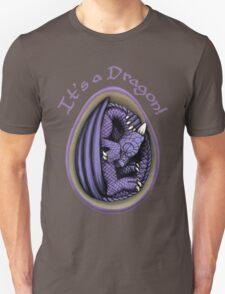 Dragon Egg - It's a Dragon Gender Reveal Joke T-Shirt