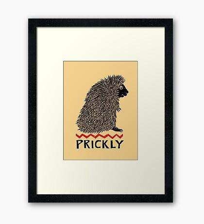 Prickly Porcupine Framed Print