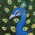 Peacock by Laura Barbosa