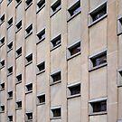 Windows by PhotosByHealy