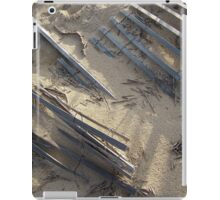 By Wind And Tide iPad Case/Skin