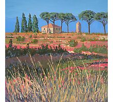 A view of Tuscany Photographic Print