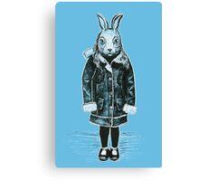 Winter White Rabbit Canvas Print