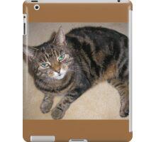 Tabby Cat with green eyes iPad Case/Skin