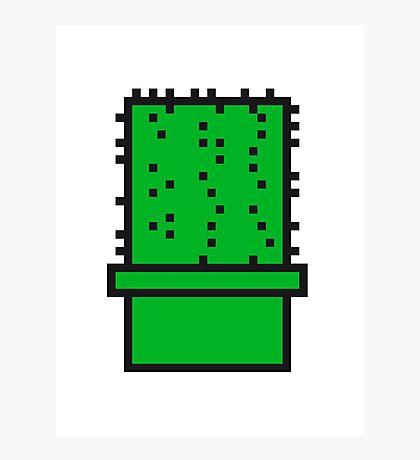 pixel nerd geek gamer videogame 2d 8 bit cactus design games zocken Photographic Print